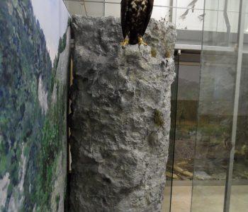 dekorácia jaskyňa Aksamitka pre Pieninský Národný park